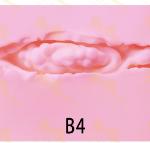 Irontech Vagina inner B4